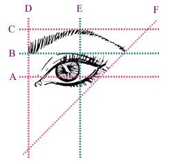 Eyebrow waxing14
